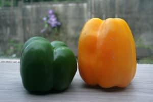Les poivrons et piments riches en vitamine C