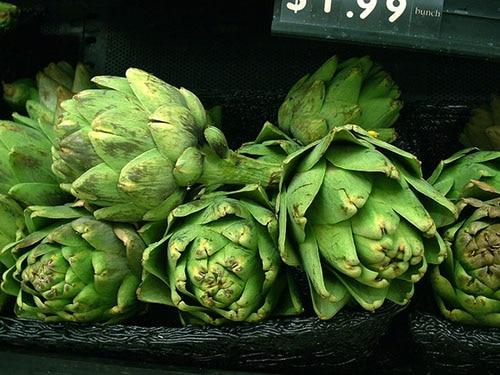 Artichauts verts