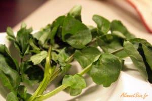 La saveur poivrée du cresson