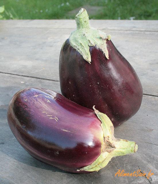 santé et nutrition de l'aubergine