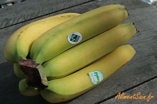 La Cavendish, la principale variété de banane