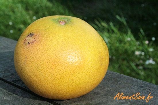 pomelo - plampemousse