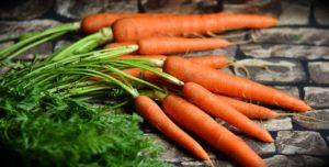 les carottes, un légume d'hiver